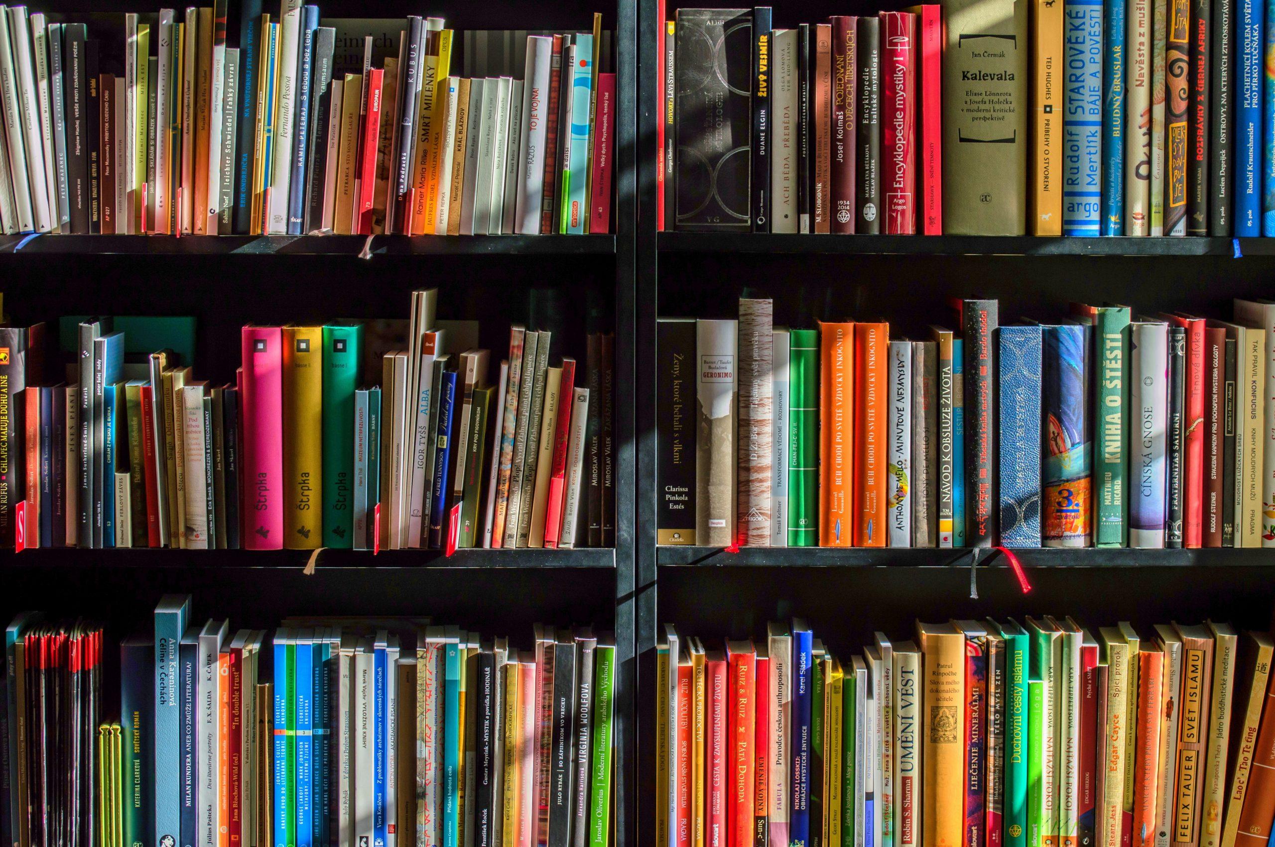 personne asiatique lit bibliothèque ponthévrard